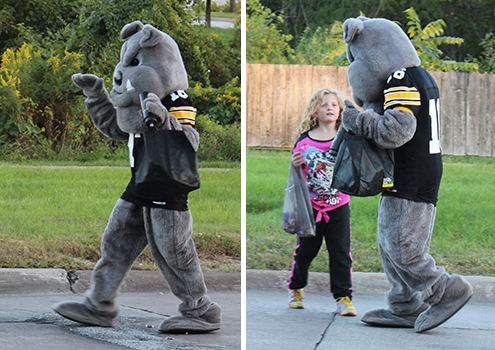 Bulldog walking on homecoming parade route